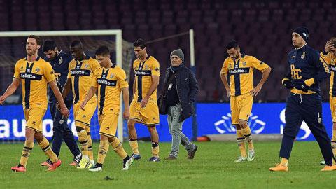 Nhận định bóng đá Parma vs Cremonese, 01h30 ngày 26/8 (Vòng 1 Hạng 2 Italia 2017/18) ảnh 1